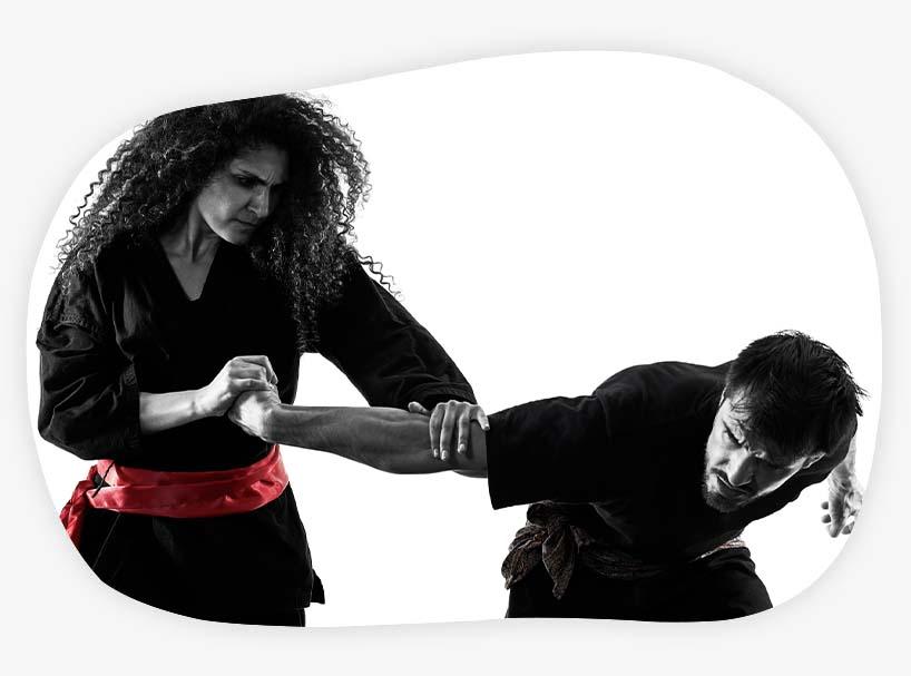 Hapkimooyeh Korean martial arts Hapkido
